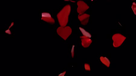 HD - Red Hearts Confetti. Red pieces slowly fall down Stok Video