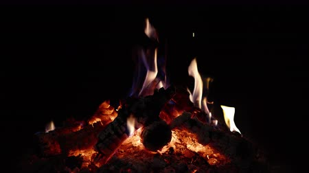 gyúlékony : 4K - Small campfire. looped video Stock mozgókép