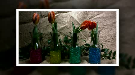 stop motion : Flowers Are Jumping Against a juta Background. Roll Call. Beautiful, Red Tulips in the Spring. Stock Footage
