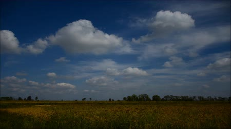 polního : Timelapse clouds over the green field, in Italy FULL HD