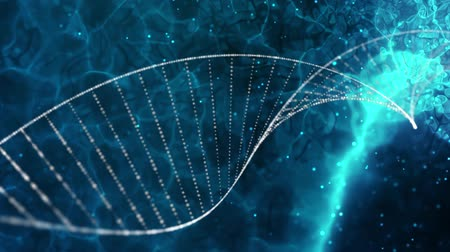 estruturas : DNA double helix medical background Stock Footage