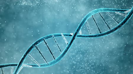experiment : double helix of the DNA in blue background
