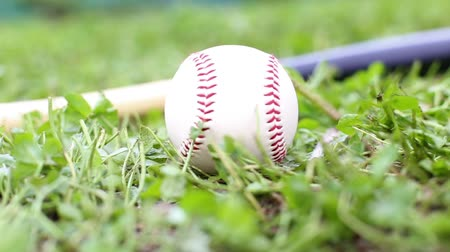 nietoperz : Baseball ball and a bat over fresh green lawn or grass