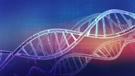 vertente : DNA double helix background