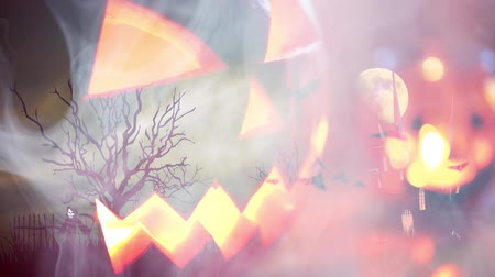 bat : Halloween background with pumpkin and bats Stock Footage
