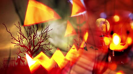 fruit bat : Halloween background with pumpkin and bats Stock Footage