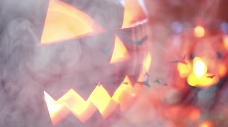 nietoperz : Halloween background with pumpkin and bats Wideo