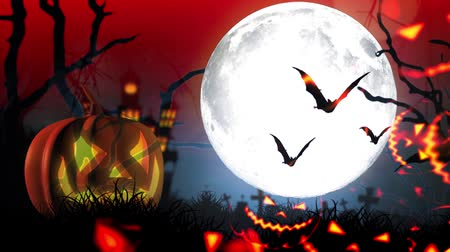 zaproszenie : Happy Halloween haunted pumpkin and flying bats Wideo