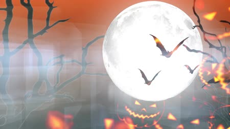 korku : Happy Halloween haunted pumpkin and flying bats Stok Video