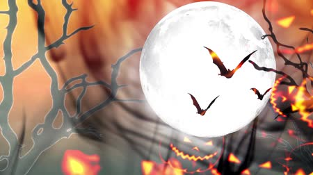 flying witch : Happy Halloween haunted pumpkin and flying bats Stock Footage