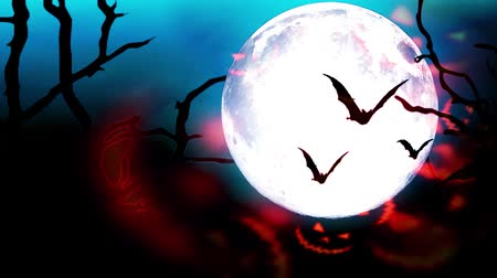 spinneweb : Happy Halloween background