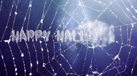 fruit bat : Happy Halloween spider web Stock Footage