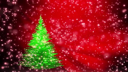 conífera : Green Christmas tree growing on red winter background