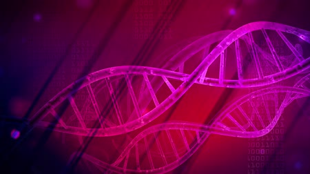 asit : DNA strand medical and genetics background