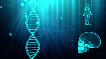 geny : Medical background with DNA strand  skull and human body Wideo