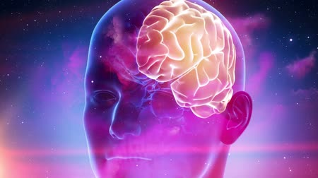 intelecto : Human brain medical cyber background Stock Footage
