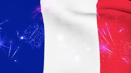 eiffel : France national day flag and fireworks Stock Footage