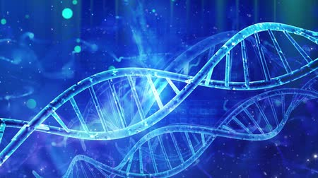 cromossoma : Abstract medical genetics DNA background Vídeos