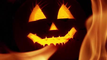 luz de velas : Creepy Halloween pumpkin lantern background Stock Footage