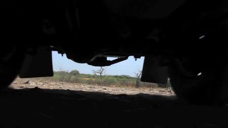 vacation : Camera shot under safari Jeep in Kalahari desert in Botswana Stock Footage