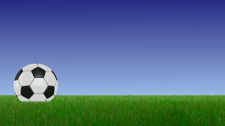 Soccer ball on the grass, on a blue background. 3D render. Vídeos