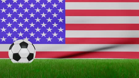 Ball on the grass on the background of the US flag. 3d rendering.