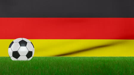 Ball on the grass on the background of the Germany flag. 3d rendering. Vídeos