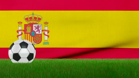 Ball on the grass on the background of the Spain flag. 3d rendering.