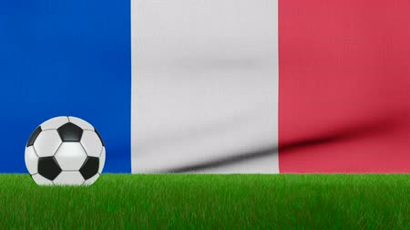 Ball on the grass on the background of the france flag. 3d rendering. Vídeos