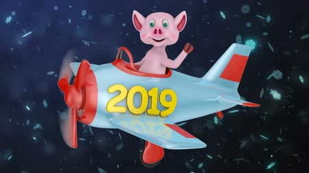 летчик : Pig in a plane with the inscription 2019 against the background of snowflakes. Стоковые видеозаписи