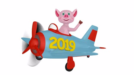 Piglet in an airplane with an inscription 2019 on a white background.