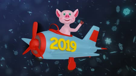Pig in a plane with the inscription 2019 against the background of snowflakes. Vídeos