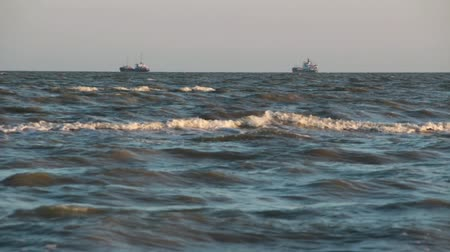 Two cargo ships on the horizon. Wideo