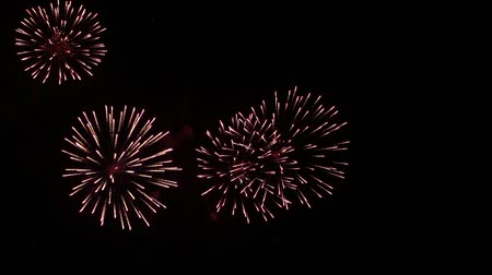 celebrar : firework display Archivo de Video