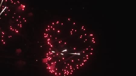 consecutivo : Slow Motion. The fireworks in the night sky. Vídeos