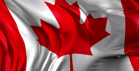 kanada : Flag of Canada Beautiful 3d animation of Canada flag in loop mode Stok Video