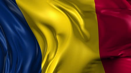чад : Flag of Chad Beautiful 3d animation of Chad in loop mode