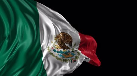 meksyk : Flag of Mexico Beautiful 3d animation of the Mexico flag with alpha channel Wideo
