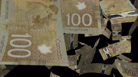 canadense : Falling Canadian dollar animation Video Effect simulates Falling 100 Canadian dollar banknotes with alpha channel in 4k resolution Vídeos
