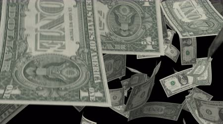 pieniądze : Falling Dollars  Video Effect simulates Falling 1 dollar banknotes with alpha channel in 4k resolution