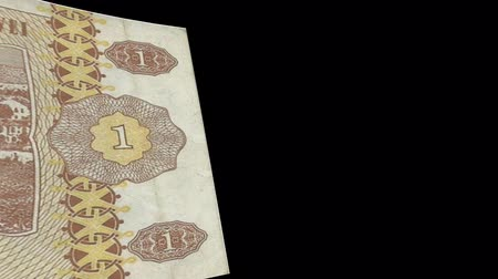 Moldova banknote Wiper Video Effect simulates Moldova Money banknote Transition from left to right with alpha channel