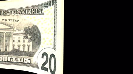 United States of America Dollar banknote Wiper Video Effect simulates United States of America Dollar banknote Wiper Money banknote Transition from left to right with alpha channel Stock Footage