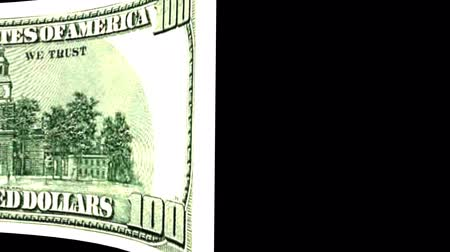 United States of America Dollar banknote Wiper Video Effect simulates United States of America Dollar banknote Wiper Money banknote Transition from left to right with alpha channel Stok Video