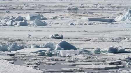 Zeilen op ijskoud IJswater Saling shot vanuit Spitsbergen Noorwegen of Ice on Arctic Sea Stockvideo