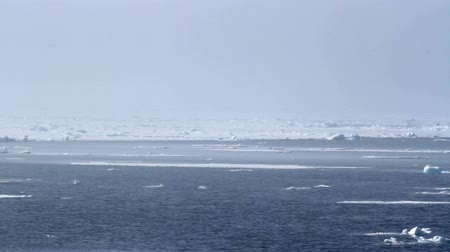 Sailing on freezing sea Saling shot from Spitsbergen Norway of Ice on Arctic Sea