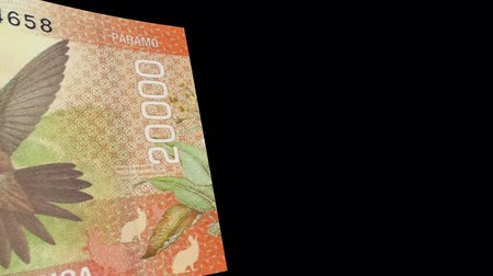 lots of money : Costa Rica banknote Wiper Video Effect simulates Costa Rica Money banknote Transition from left to right with alpha channel