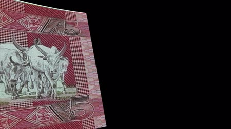 stiff : South Sudan banknote Wiper Video Effect simulates South Sudan Money banknote Transition from left to right with alpha channel Stock Footage