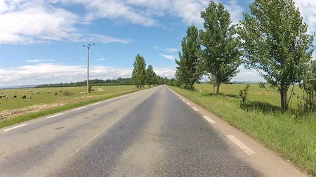 straight road : Driving on a sunny day