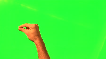 megragad : Male hand gestures - green screen and alpha matte