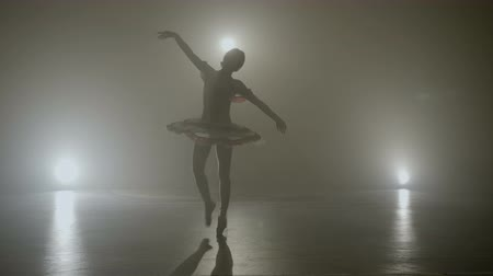 Young skinny graceful ballerina dancing on a dark stage as part of the audition for an a show Stock Footage